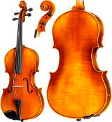 Core Academy A20 Viola Only